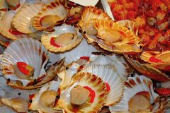 Il contatore con frutti di mare al servizio di pesci Fotografia Stock Libera da Diritti