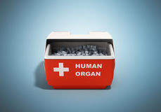 il contenitore chiuso 3d rosso di frigorifero dell'organo umano rende su backgr blu illustrazione vettoriale