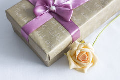 Il contenitore di regalo con è aumentato Immagini Stock Libere da Diritti