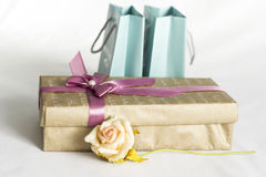 Il contenitore di regalo con è aumentato Immagine Stock