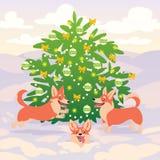 Il corgi divertente insegue il gioco sull'albero di Natale vicino decorato della neve Vettore Un simbolo di 2018 Nuovo anno felic Immagini Stock