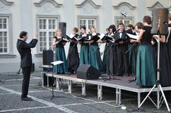 Il coro concerta Fotografia Stock