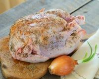 Il corpo del pollo con le spezie immagine stock libera da diritti