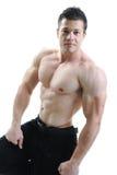 Il corpo maschio perfetto Fotografie Stock