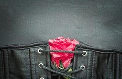 Il corsetto sexy del feticcio gotico di Bdsm con è aumentato Fotografia Stock