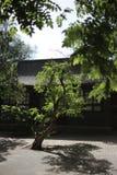Il cortile ancestrale del tempio Fotografie Stock