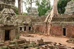 Cortile interno, tempio di Prohm di tum, Cambogia fotografia stock libera da diritti