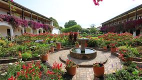 Il cortile interno ha fiorito di giorno di costruzione coloniale di Villa de Leyva Colombia archivi video