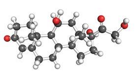 Molecola del cortisol Fotografie Stock