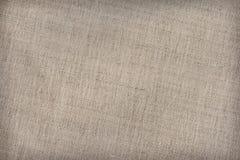 Il cotone Duck Canvas Coarse Texture Sample dell'artista fotografia stock