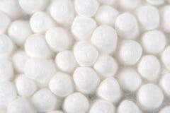 Il cotone germoglia il primo piano (dei tamponi) Fotografia Stock Libera da Diritti