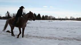 Il cowboy femminile monta un cavallo ad un galoppo Fotografie Stock