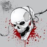 Il cranio Fotografie Stock