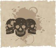 Il cranio marrone del grunge di vettore su vecchio documento Immagine Stock