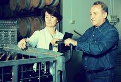Il creatore del vino e dell'esperto ispeziona i contenitori Fotografie Stock Libere da Diritti