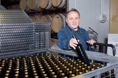 Il creatore positivo del vino ispeziona i contenitori Fotografia Stock
