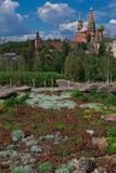 Il Cremlino di Mosca e il ` s Cathedralagainst del basilico del san le sedere Fotografia Stock Libera da Diritti