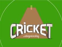 Il cricket mette in mostra il concetto con i ceppi e la palla del wicket Fotografie Stock