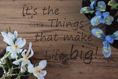 Il croco ed il giacinto, citano le piccole cose che rendono la vita grande Fotografia Stock