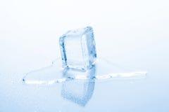 Il cubetto di ghiaccio sta fondendosi fotografia stock libera da diritti