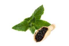 Il cucchiaio con il tè delle foglie e la menta verde fresca coprono di foglie isolato su fondo bianco Fotografia Stock