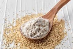 Il cucchiaio dell'amaranto semina la farina Fotografie Stock Libere da Diritti