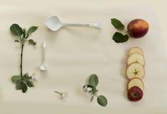 Il cucchiaio della porcellana, la mela e di melo si ramificano con i fiori su una tavola bianca Fotografia Stock
