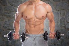 Il culturismo del culturista muscles il potere di addestramento del bicipite delle teste di legno Immagini Stock Libere da Diritti
