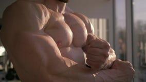 Il culturismo, uomo muscolare dell'atleta fa il riscaldamento dopo il muscolo in costruzione di allenamento di potere nel club di stock footage