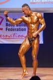 Il culturista maschio flette i suoi muscoli e mostra la sua migliore costituzione fisica Fotografie Stock Libere da Diritti