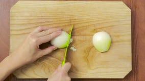 Il cuoco unico della donna prepara le cipolle nella cucina Vista da sopra archivi video