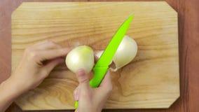 Il cuoco unico della donna prepara le cipolle nella cucina Vista da sopra Vista superiore archivi video