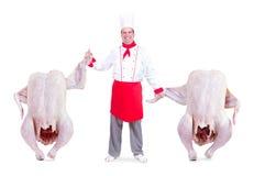 Il cuoco unico sostiene l'ala del pollo di conquista fotografia stock