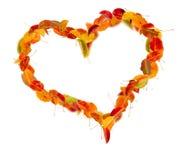 Il cuore dei fogli di autunno Immagine Stock Libera da Diritti
