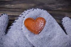 Il cuore freddo riscalderà il calore e preoccuparsi fotografia stock libera da diritti