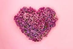 Il cuore ha modellato i fiori lilla su fondo rosa Simbolo di amore Vista superiore fotografia stock libera da diritti