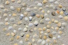Il cuore ha modellato le conchiglie colorate in sabbia alla spiaggia Fotografie Stock