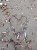 Il cuore pietroso ha messo sulla spiaggia Immagini Stock