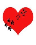 Il cuore rosso con la zampa del cucciolo gli stampa camminare attraverso. Metafora Pupp Immagini Stock