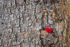 Il cuore tricotta con la vecchia corteccia fotografia stock libera da diritti