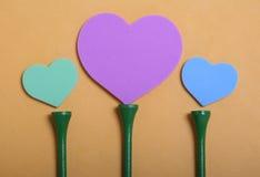 Il cuore un a Tire i fiori Fotografie Stock