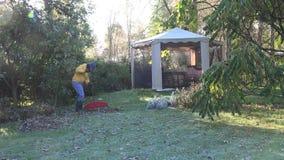 Il custode dell'iarda in rastrello giallo del maglione lascia in giardino alla mattina fredda 4K di autunno stock footage