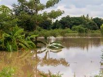 Il danno dalle inondazioni Fotografia Stock