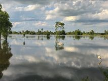 Il danno dalle inondazioni nella stagione delle pioggie Immagine Stock Libera da Diritti