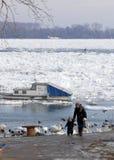 Il Danubio congelato fotografia stock libera da diritti