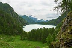 Il dei Cavalli di Lago Alpe del lago Fotografia Stock