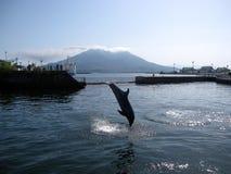 Il delfino che salta davanti all'isola di vulcano Fotografie Stock Libere da Diritti