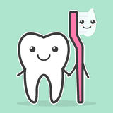 Il dente e lo spazzolino da denti sono migliori amici Immagine Stock