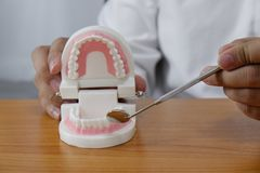 Il dentista facendo uso degli strumenti sui denti modella nel concetto dentario e medico dentario professionale della clinica del fotografia stock libera da diritti