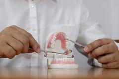 Il dentista facendo uso degli strumenti sui denti modella nel concetto dentario e medico dentario professionale della clinica del immagine stock